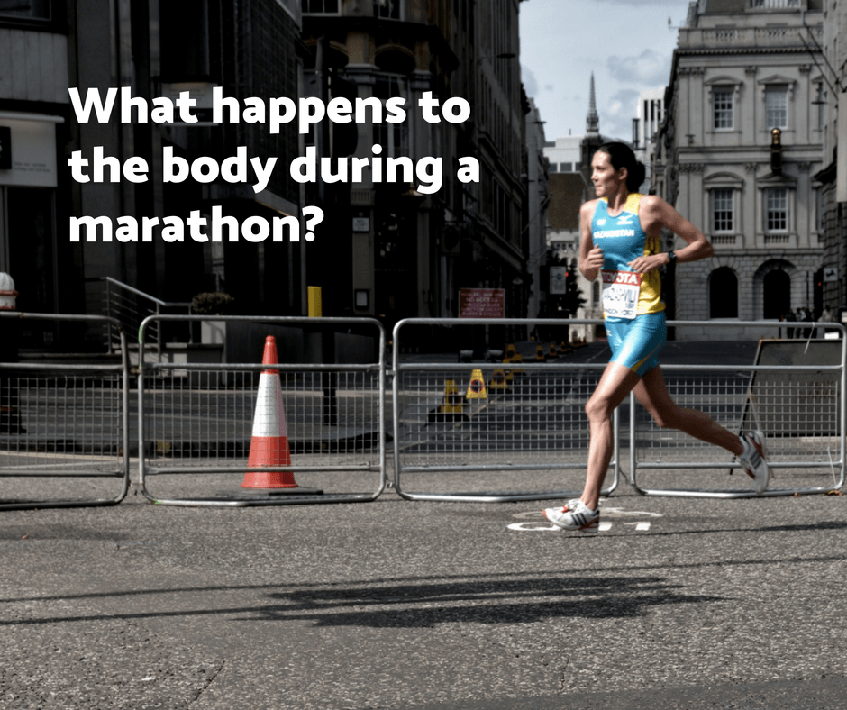 What happens to the body during a marathon?